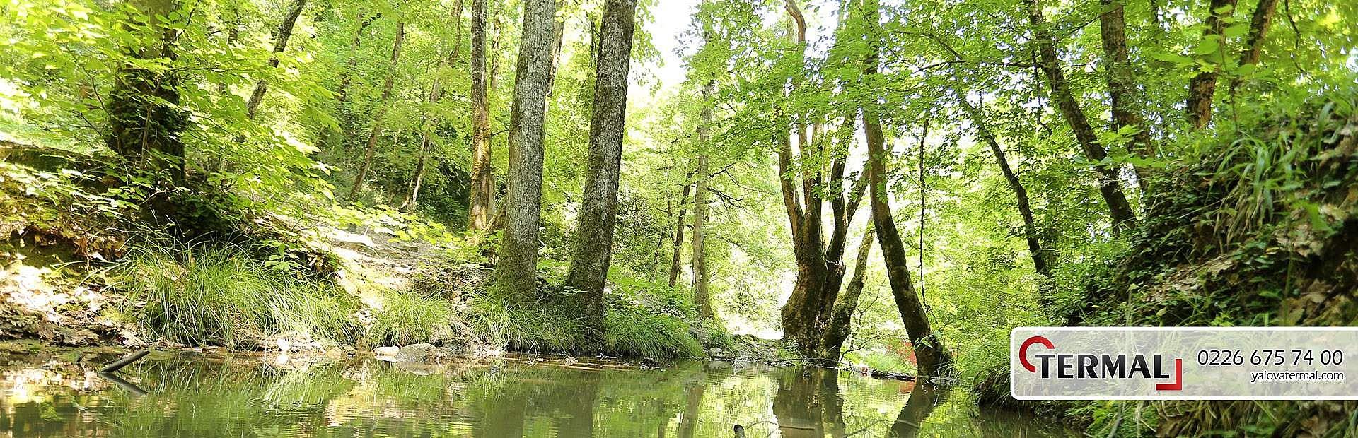Termal Kaplıcaları | Yalova TÜRKİYE